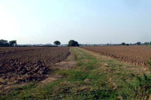 Baston Fen Farm