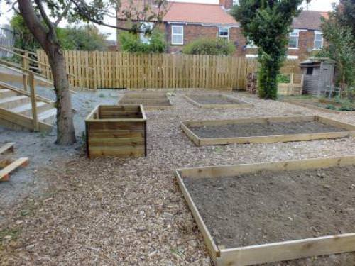 Beverley Town Council's 'From Field to Table' Training Allotment Plot