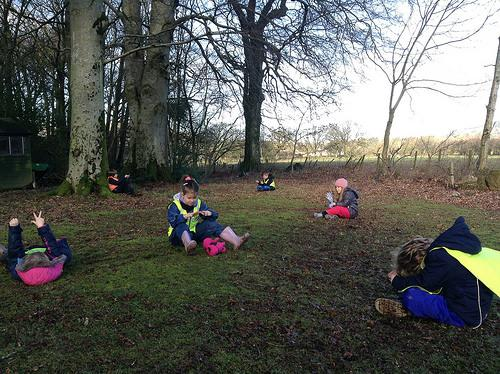 RFS Teaching Trees @ Dodd Wood