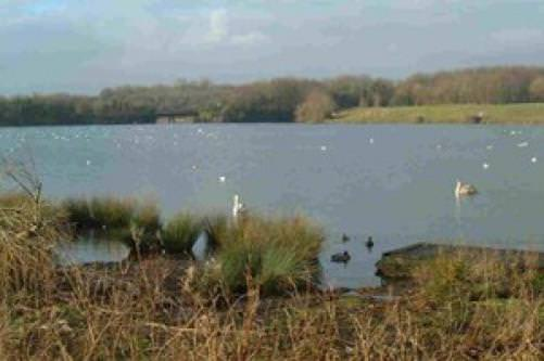 Cosmeston Lakes Country Park