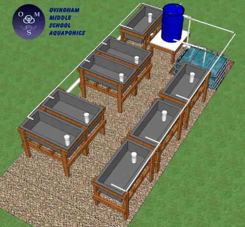 Ovingham Middle School Aquaponics