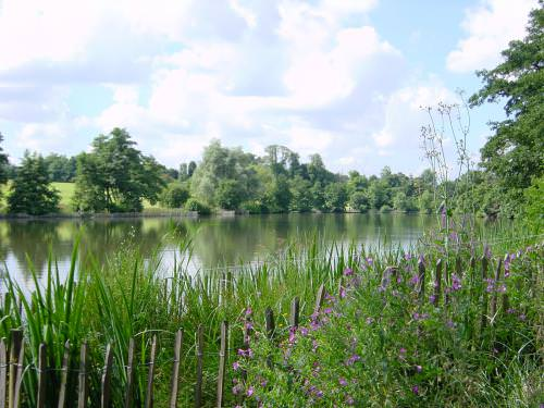 Weald Country Park