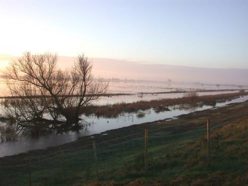 Ouse Washes Reserve