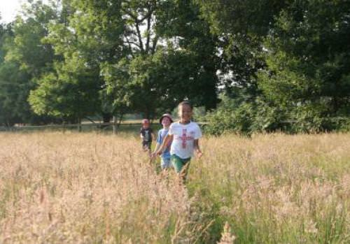 College Copse Farm - Hampshire and Isle of Wight Wildlife Trust