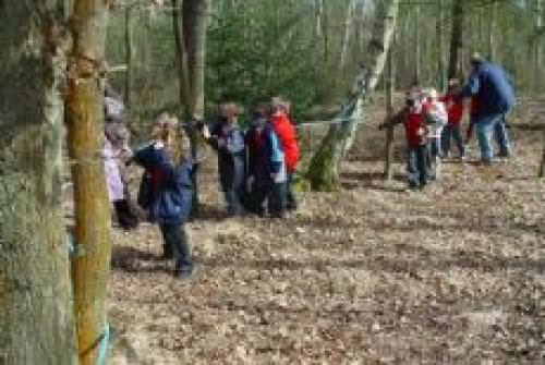 Nower Wood Educational