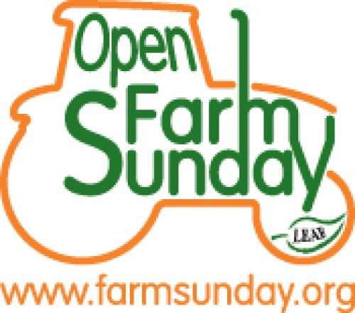 Why are farms open on Sunday?
