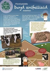 BBSRC Science on the Farm poster - ANIMAL FEED (Welsh version)