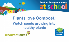 Plants love compost video