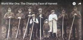 World War 1: the Changing Face of Harvest