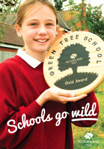Green Tree Schools Award