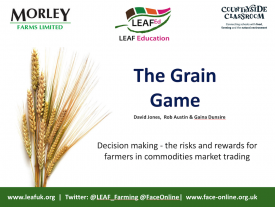 Business Studies Grain Trading Game