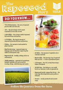 The Rapeseed Story