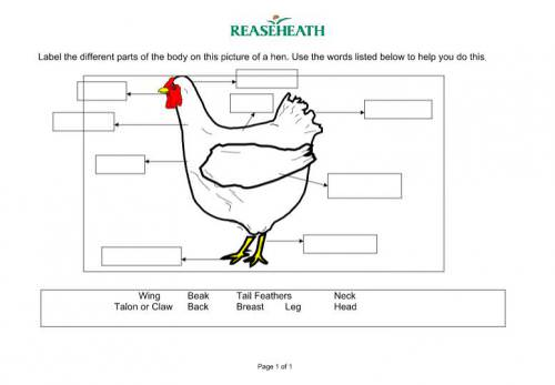 Interactive Activities to Practice Animals in Spanish for ...