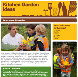 Kitchen Garden Ideas case studies