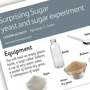 Yeast and sugar experiment