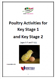 Poultry Activities for Key Stage 1 and Key Stage 2