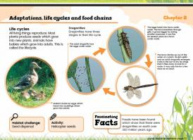 Canal & River Habitats Topic Pack