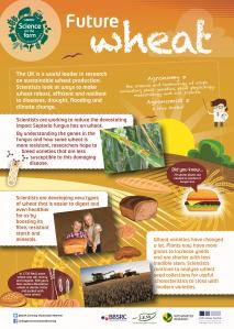 BBSRC Science on the Farm - WHEAT