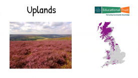 Conservation Fact Files 3 - Habitats - Uplands