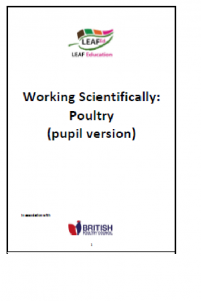 Working scientifically - poultry