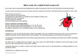 What made the ladybird bad-tempered?