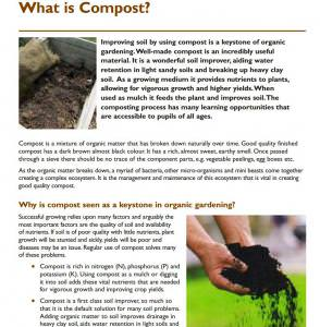 Making compost in schools